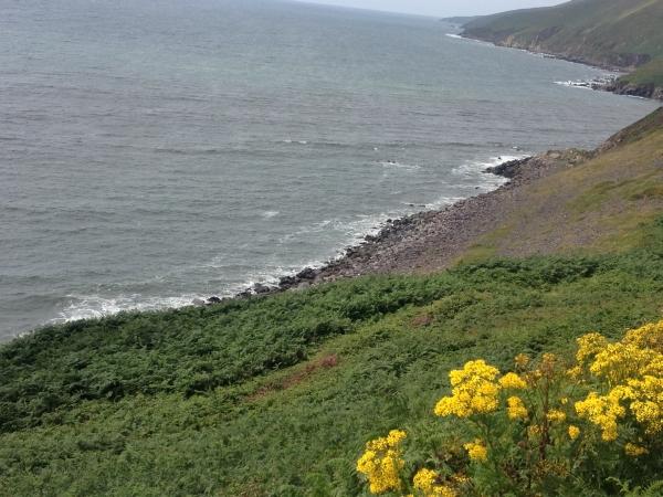 irland-2013-tag-3-024