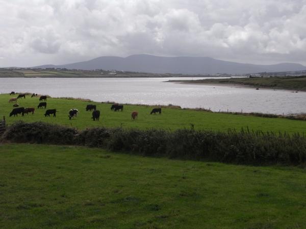 irland-2013-tag-3-048