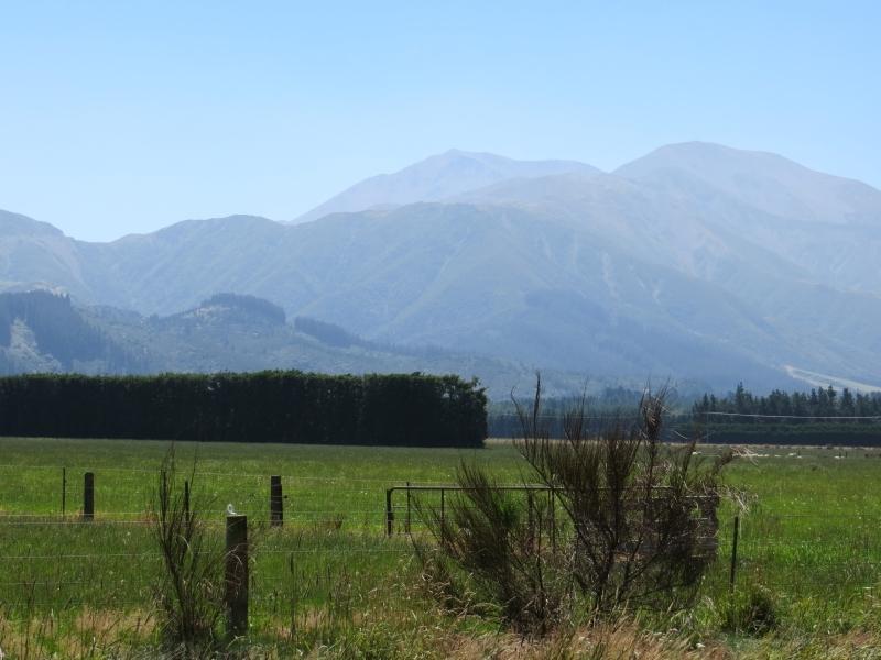 Neuseeland_2014_Tour_1_014