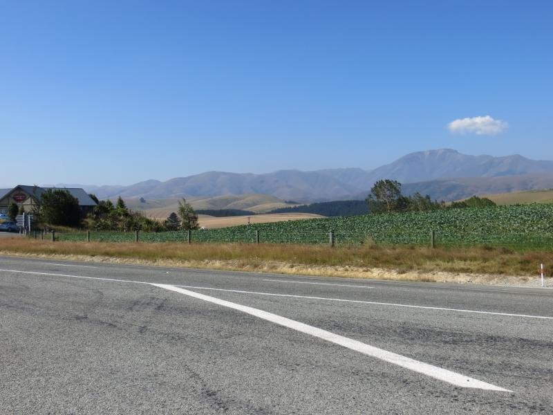 Neuseeland_2014_Tour_1_019