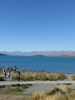 Neuseeland_2014_Tour_1_030
