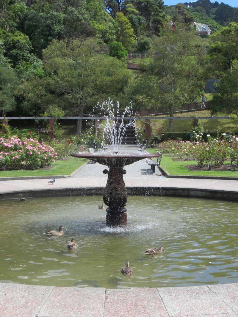 Neuseeland_2014_Tour_11_35