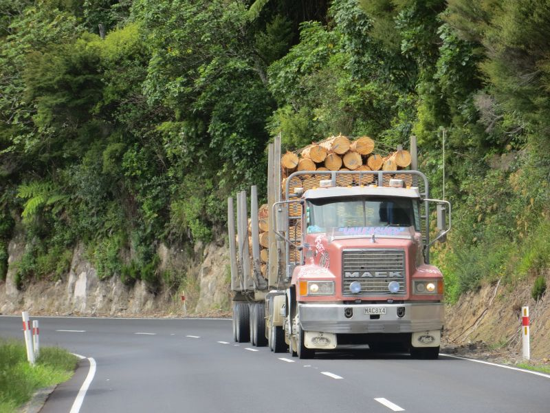 Neuseeland_2014_Tour_14_14