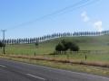 Neuseeland_2014_Tour_14_02