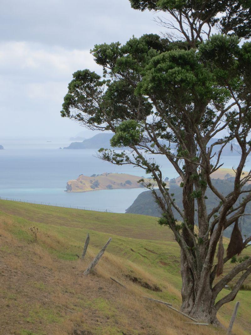 Neuseeland_2014_Tour_15_33