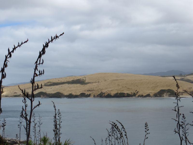 Neuseeland_2014_Tour_18_14