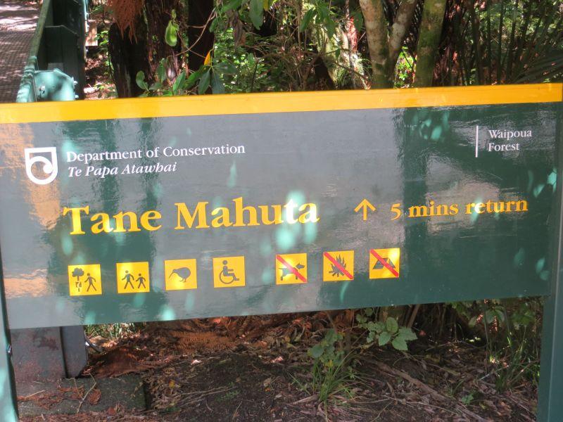 Neuseeland_2014_Tour_18_18
