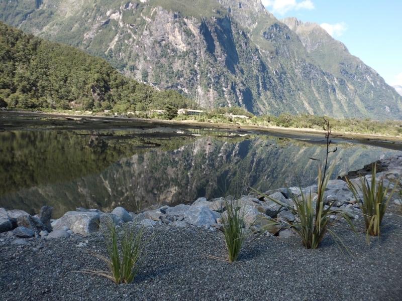 Neuseeland_2014_Tour_3_012