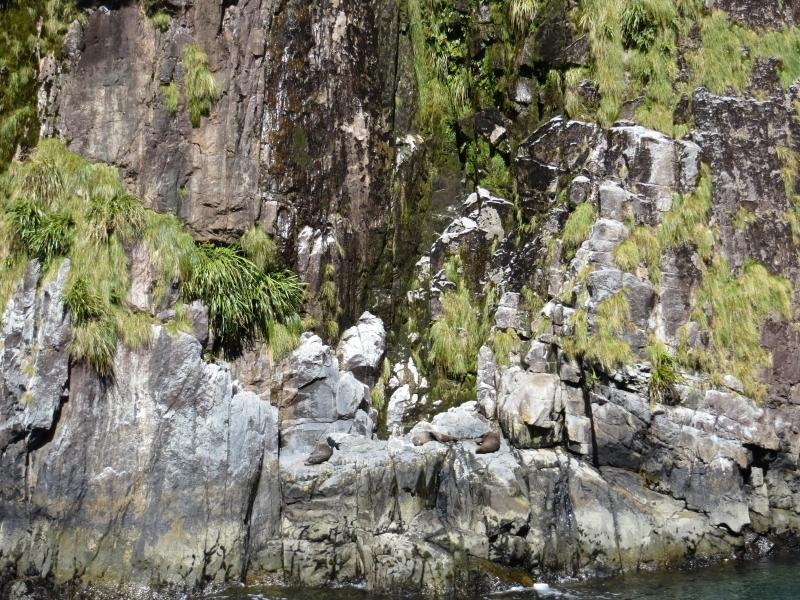 Neuseeland_2014_Tour_3_027
