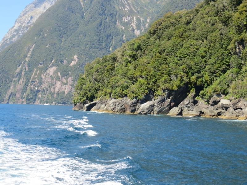 Neuseeland_2014_Tour_3_038