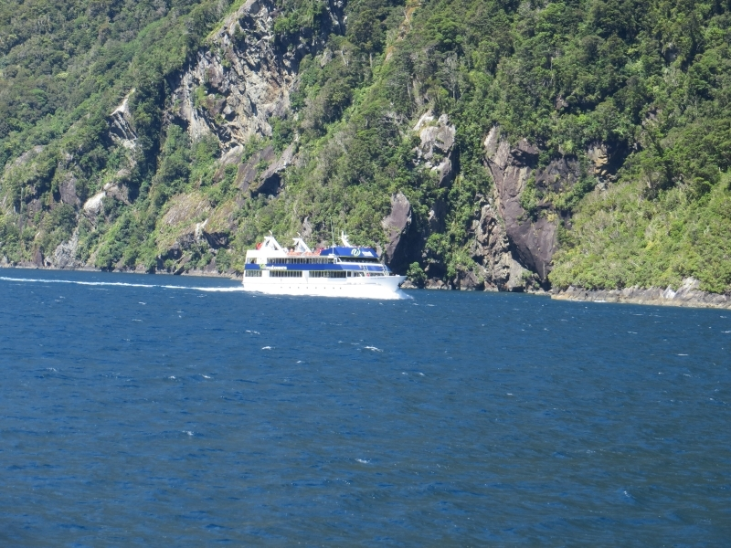 Neuseeland_2014_Tour_3_051