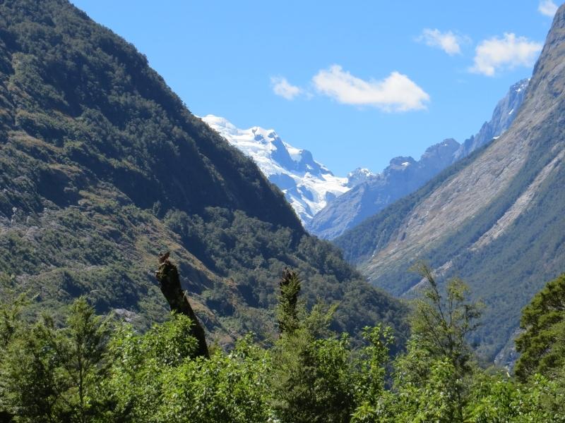 Neuseeland_2014_Tour_3_079