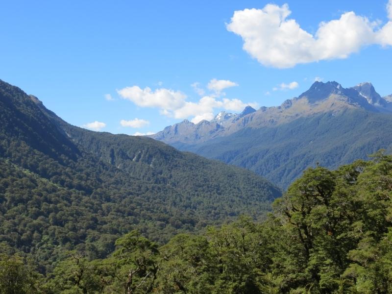 Neuseeland_2014_Tour_3_115