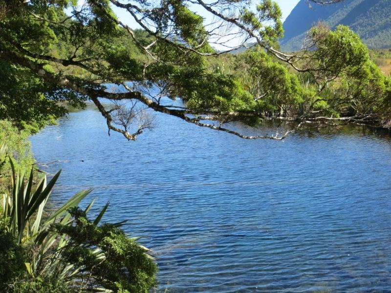 Neuseeland_2014_Tour_3_121