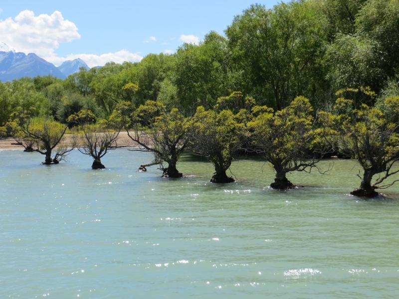 Neuseeland 2014 Tour 4 029