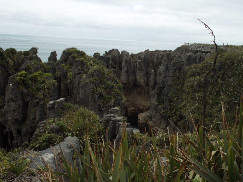 Neuseeland_2014_Tour_7_Pancake_07