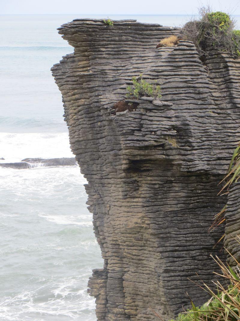 Neuseeland_2014_Tour_7_56