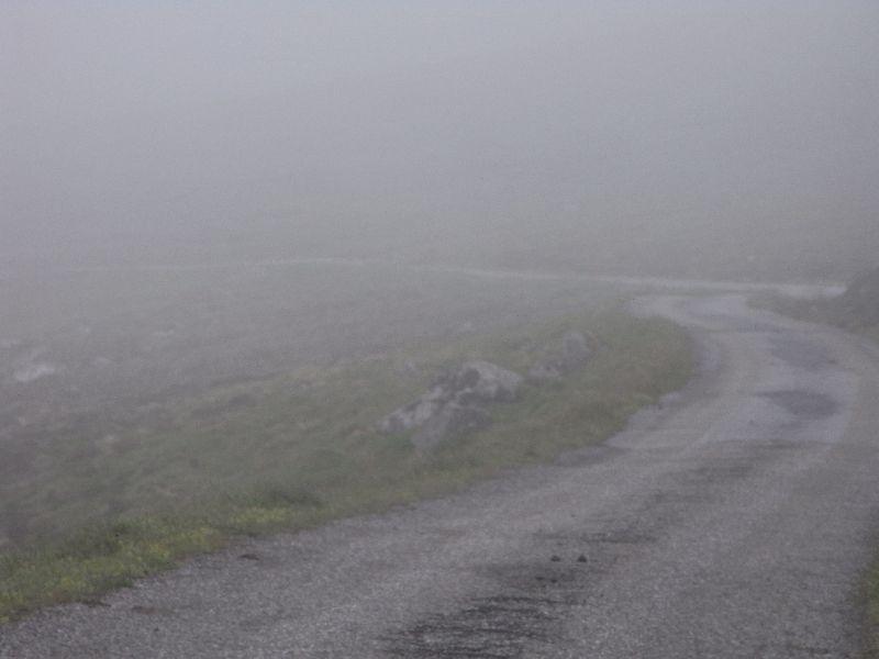 Jungsi - Norwegen 2010 387