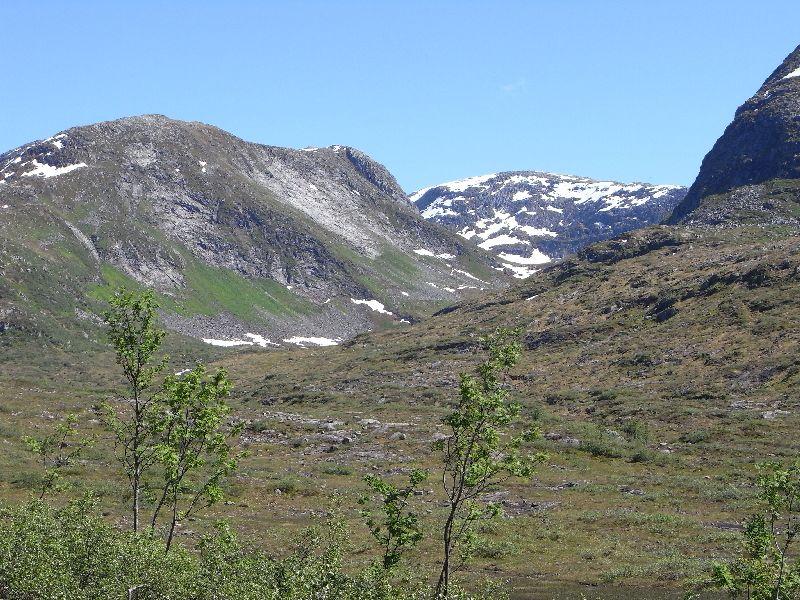 Jungsi - Norwegen 2010 438