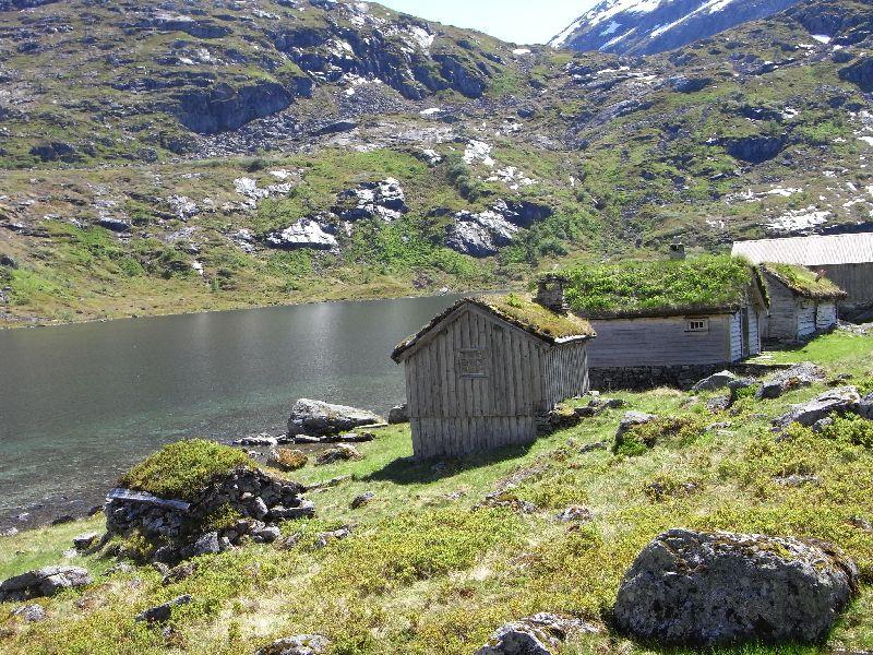Jungsi - Norwegen 2010 443