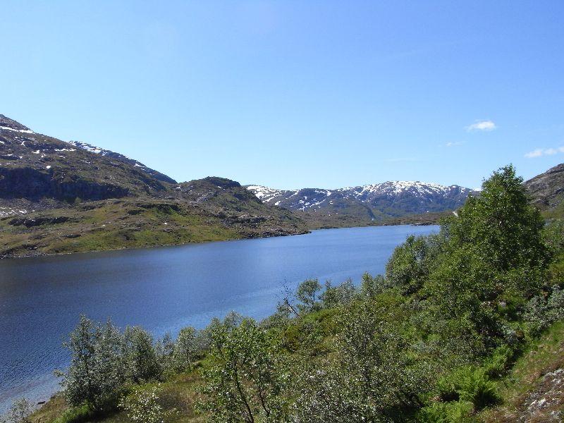 Jungsi - Norwegen 2010 448