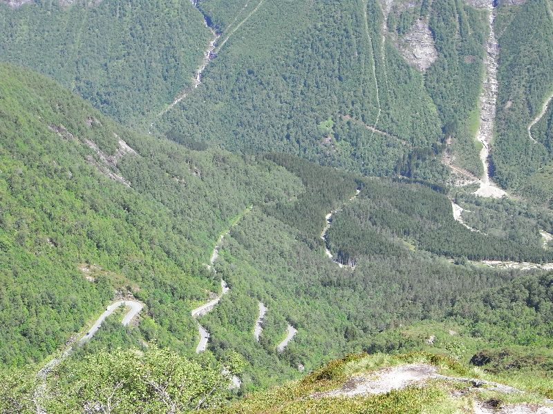 Jungsi - Norwegen 2010 450
