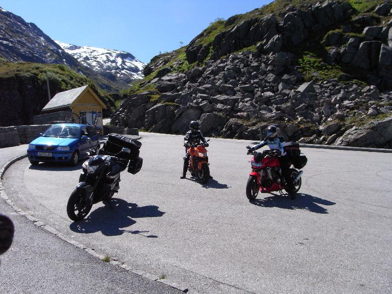 Jungsi - Norwegen 2010 452