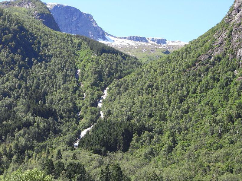 Jungsi - Norwegen 2010 455