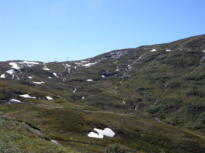 Jungsi - Norwegen 2010 483