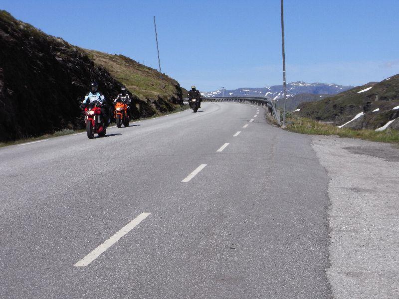 Jungsi - Norwegen 2010 488