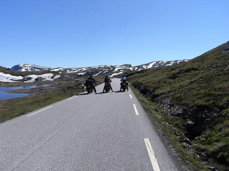 Jungsi - Norwegen 2010 489