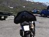 Jungsi - Norwegen 2010 480