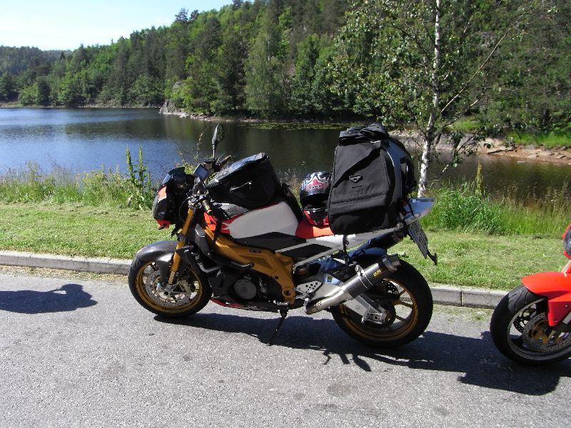 Jungsi - Norwegen 2010 031