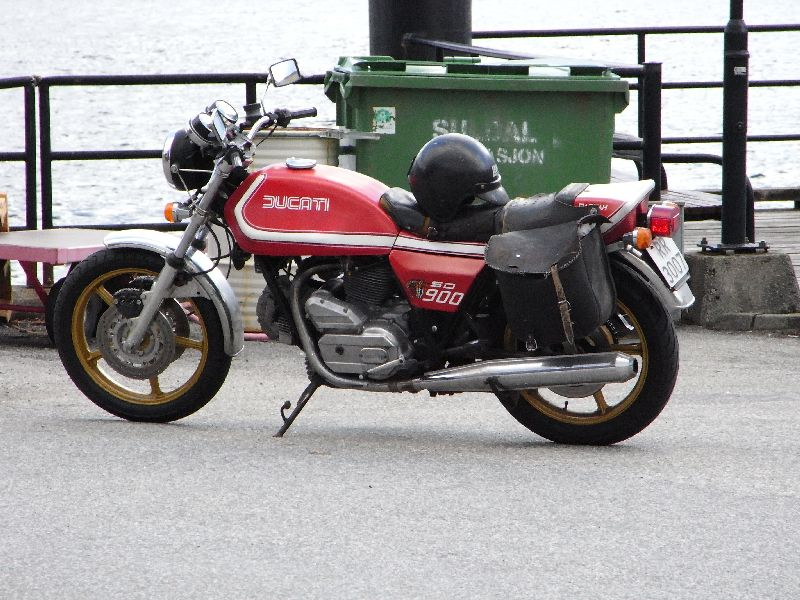 Jungsi - Norwegen 2010 083