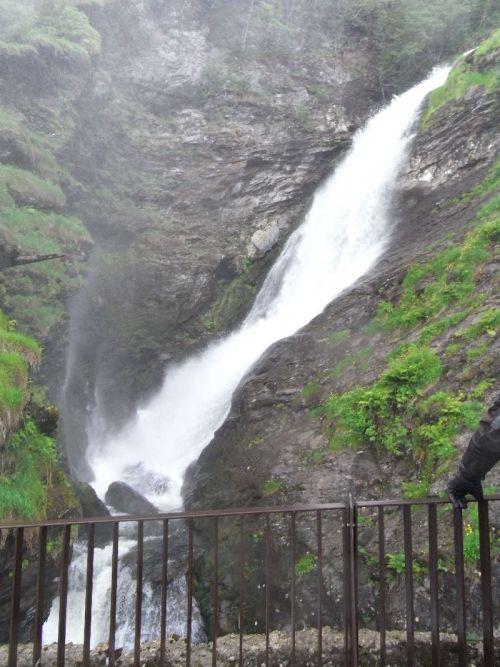 Jungsi - Norwegen 2010 108