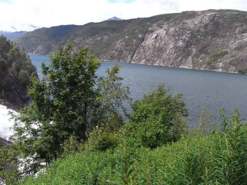 Jungsi - Norwegen 2010 137