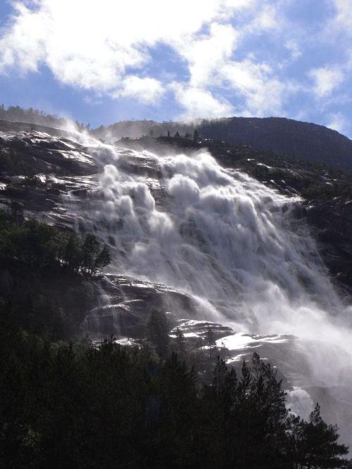 Jungsi - Norwegen 2010 138