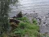 Jungsi - Norwegen 2010 105
