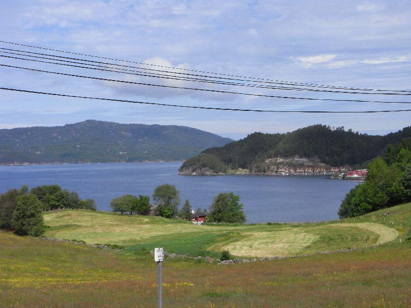 Jungsi - Norwegen 2010 151