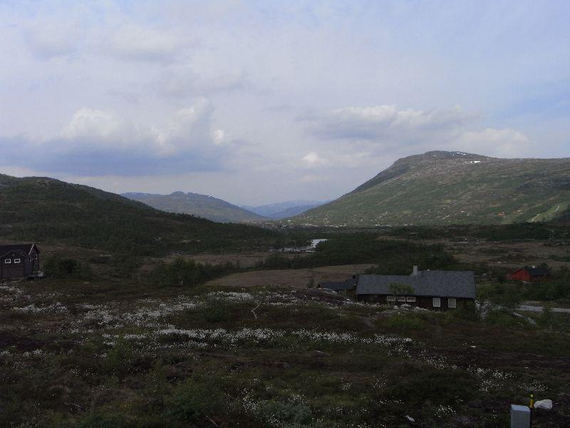 Jungsi - Norwegen 2010 185