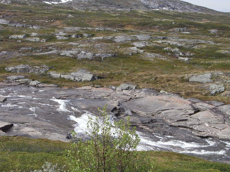 Jungsi - Norwegen 2010 190