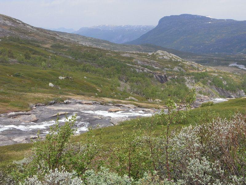 Jungsi - Norwegen 2010 191
