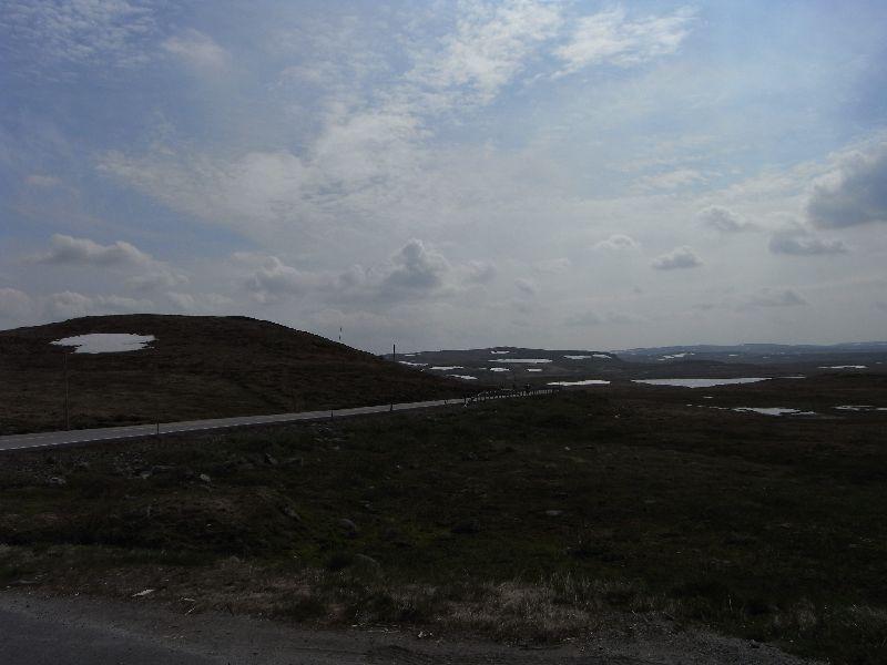 Jungsi - Norwegen 2010 198
