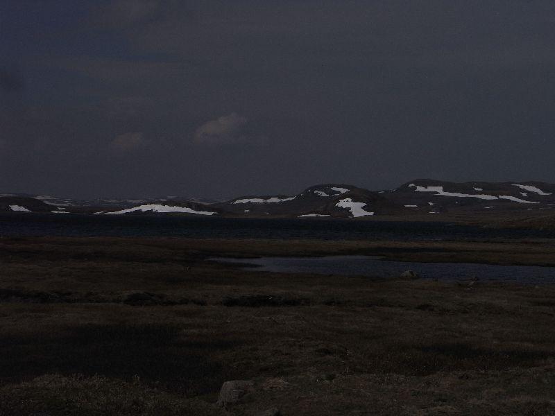 Jungsi - Norwegen 2010 205