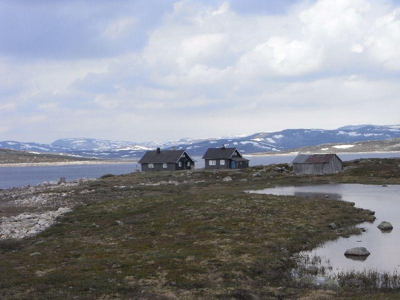 Jungsi - Norwegen 2010 210
