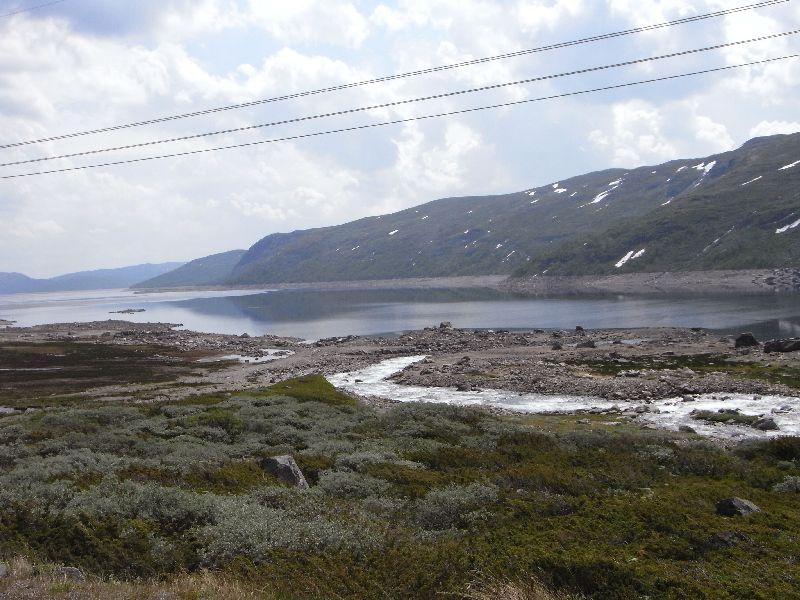 Jungsi - Norwegen 2010 220