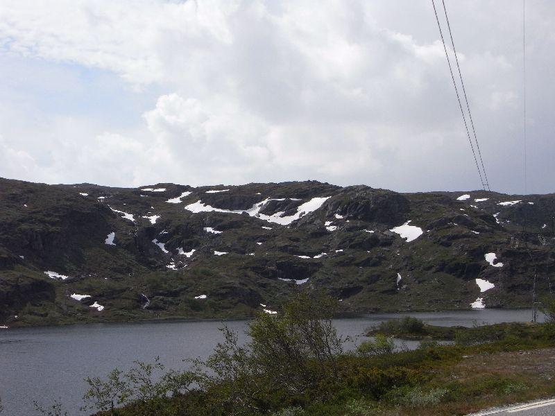 Jungsi - Norwegen 2010 227