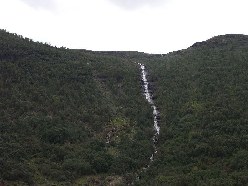 Jungsi - Norwegen 2010 270
