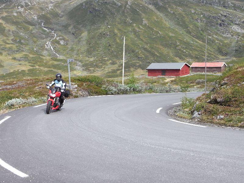 Jungsi - Norwegen 2010 277