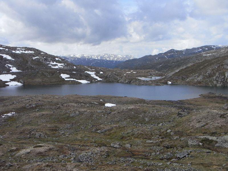 Jungsi - Norwegen 2010 287